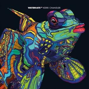 Watergate 15 album cover