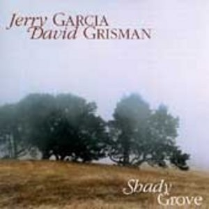 Shady Grove album cover