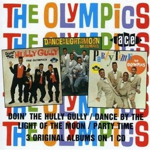 Doin' The Hully Gully-Dance By The Light Of The Moon-Party Time album cover