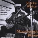 Mississippi Blues album cover
