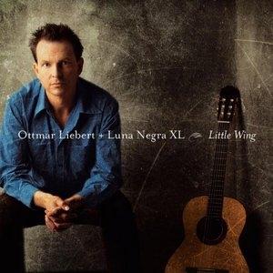 Little Wing album cover