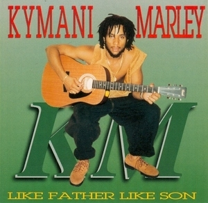 Like Father Like Son album cover
