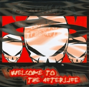Welcome To The Afterlife album cover