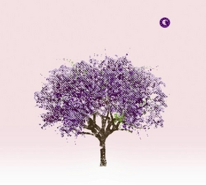 Tomorrow Morning album cover