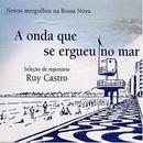 A Onda Que Se Ergueu No M... album cover