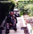 What's The Altitude album cover