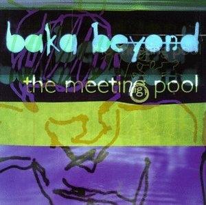 The Meeting Pool album cover