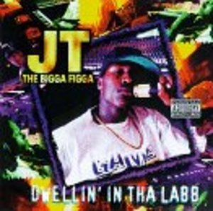 Dwellin' In Tha Labb album cover