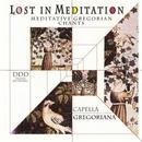 Lost In Meditation: Medit... album cover