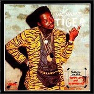 Me Name Tiger album cover