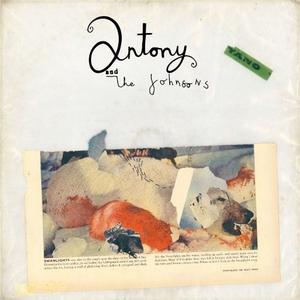 Swanlights album cover