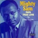 Papa True Love: The Amy S... album cover