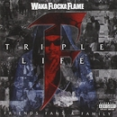 Triple F Life: Fans, Frie... album cover