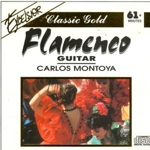 Flamenco Guitar album cover