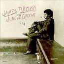 In The Jungle Groove album cover