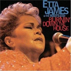 Burnin Down The House album cover