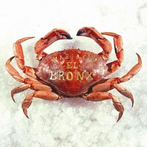 Mariachi El Bronx (I) album cover