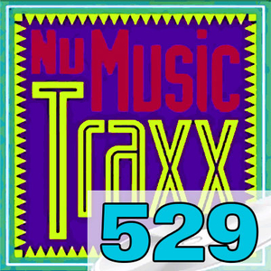 ERG Music: Nu Music Traxx, Vol. 529 (August 2020) album cover