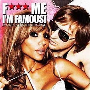 F*** Me I'm Famous! Ibiza Mix 2008 album cover