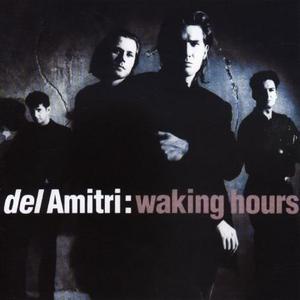 Waking Hours album cover