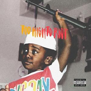 Too High To Riot album cover