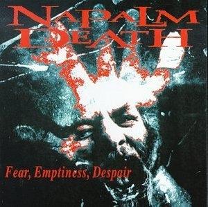 Fear Emptiness Despair album cover