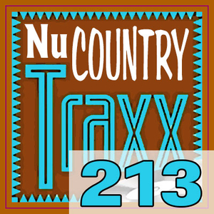 ERG Music: Nu Country Traxx, Vol. 213 (January 2017) album cover
