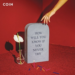 How Will You Know If You Never Try album cover