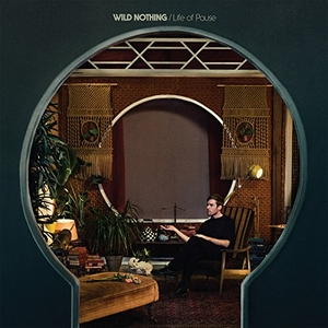 Life Of Pause album cover