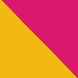 Flag album cover