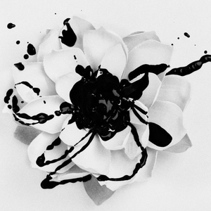 White Lotus album cover