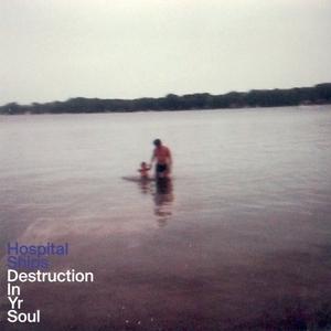Destruction In Yr Soul album cover