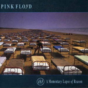 A Momentary Lapse Of Reason album cover