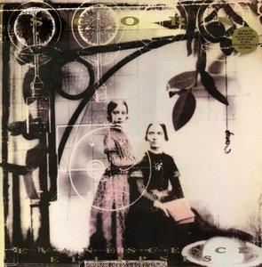 Evanescence~ Ellipsis album cover