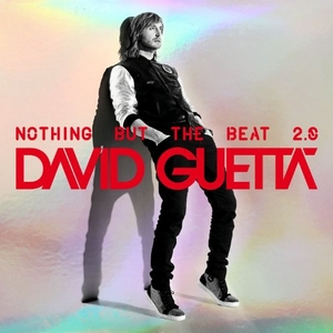 Nothing But The Beat 2.0 album cover