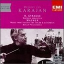 Strauss: Sinfonia Domesti... album cover