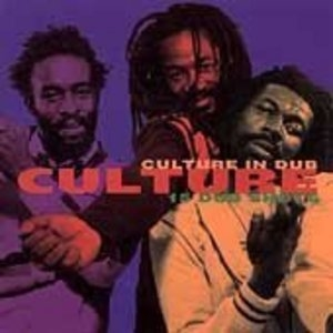 Culture In Dub 15 Dub Shots album cover