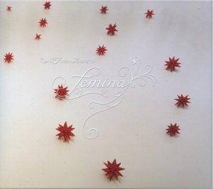Femina album cover