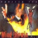 Mind Blowin album cover