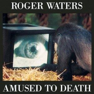 Amused To Death album cover