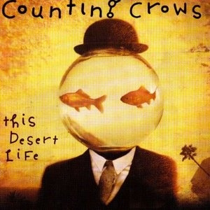 This Desert Life album cover