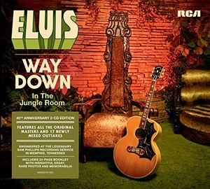 Way Down In The Jungle Room album cover