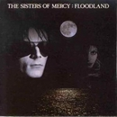 Floodland album cover