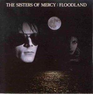 Floodland album cover
