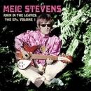 Rain In The Leaves: The E... album cover