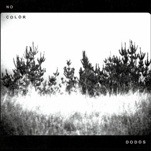 No Color album cover