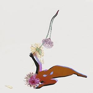 The Far Field album cover