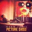 Picture Show album cover