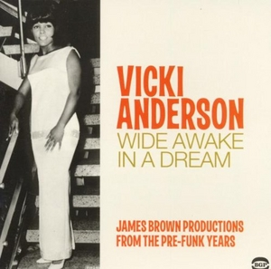 Wide Awake In A Dream album cover