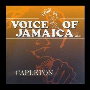 Voice Of Jamaica Vol.3 album cover